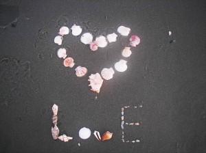 loveshells