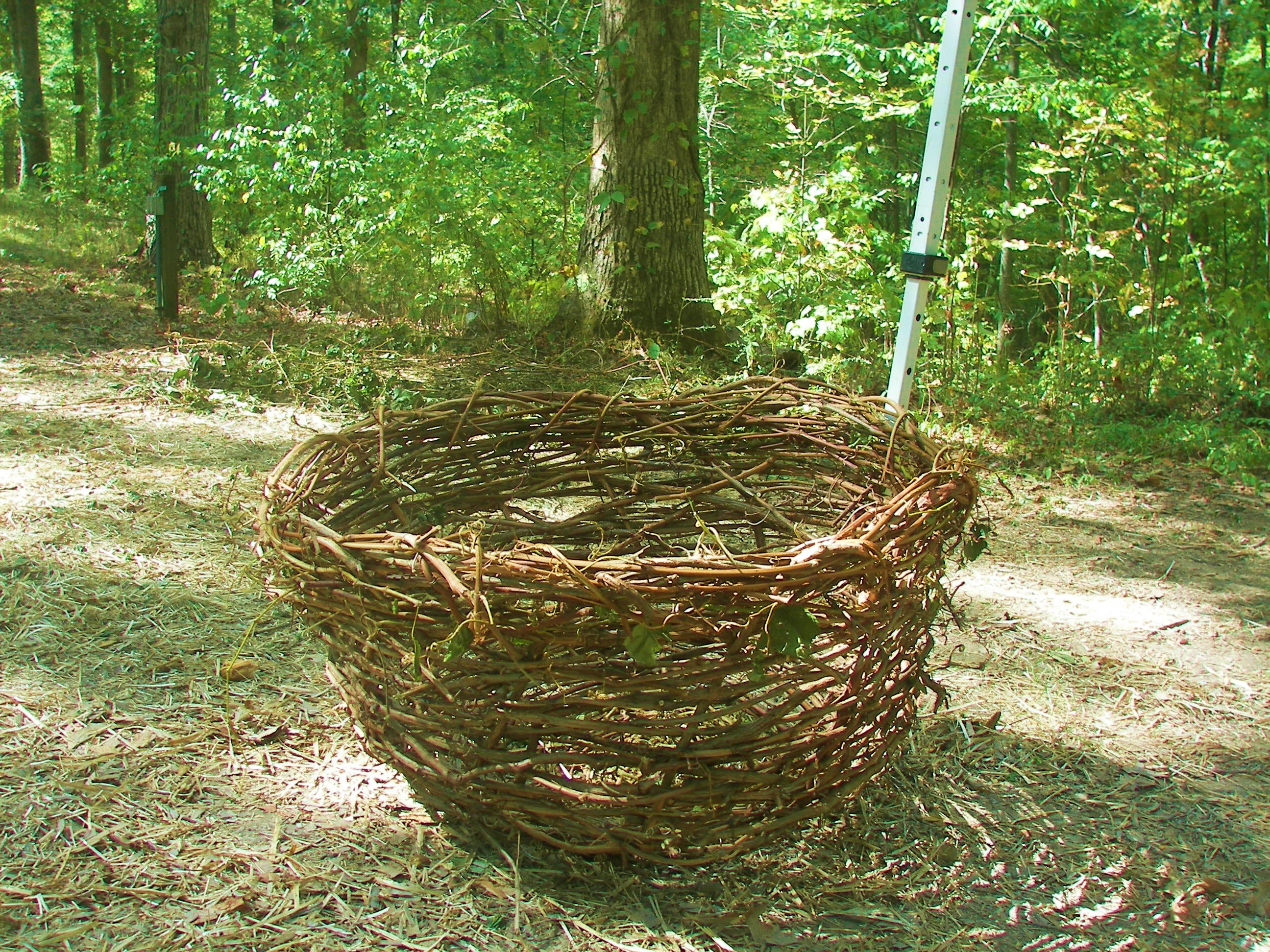 Basket Weaving Using Vines : Grape vine baskets blue cotton memory