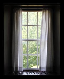 windowc12