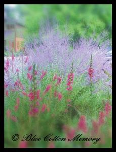 lavendarwedding6c