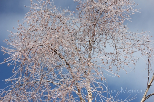 snowdiamonds2_edited-1